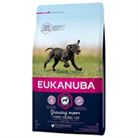 3 kg Eukanuba Puppy & Junior large breed hvalpefoder